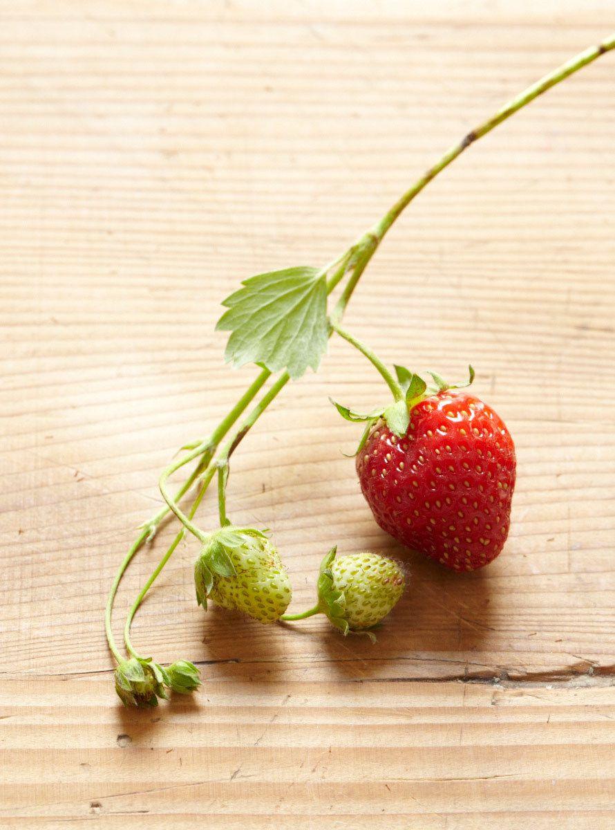 1s_strawberries_20130621_030.jpg