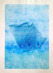 net in the sea 2