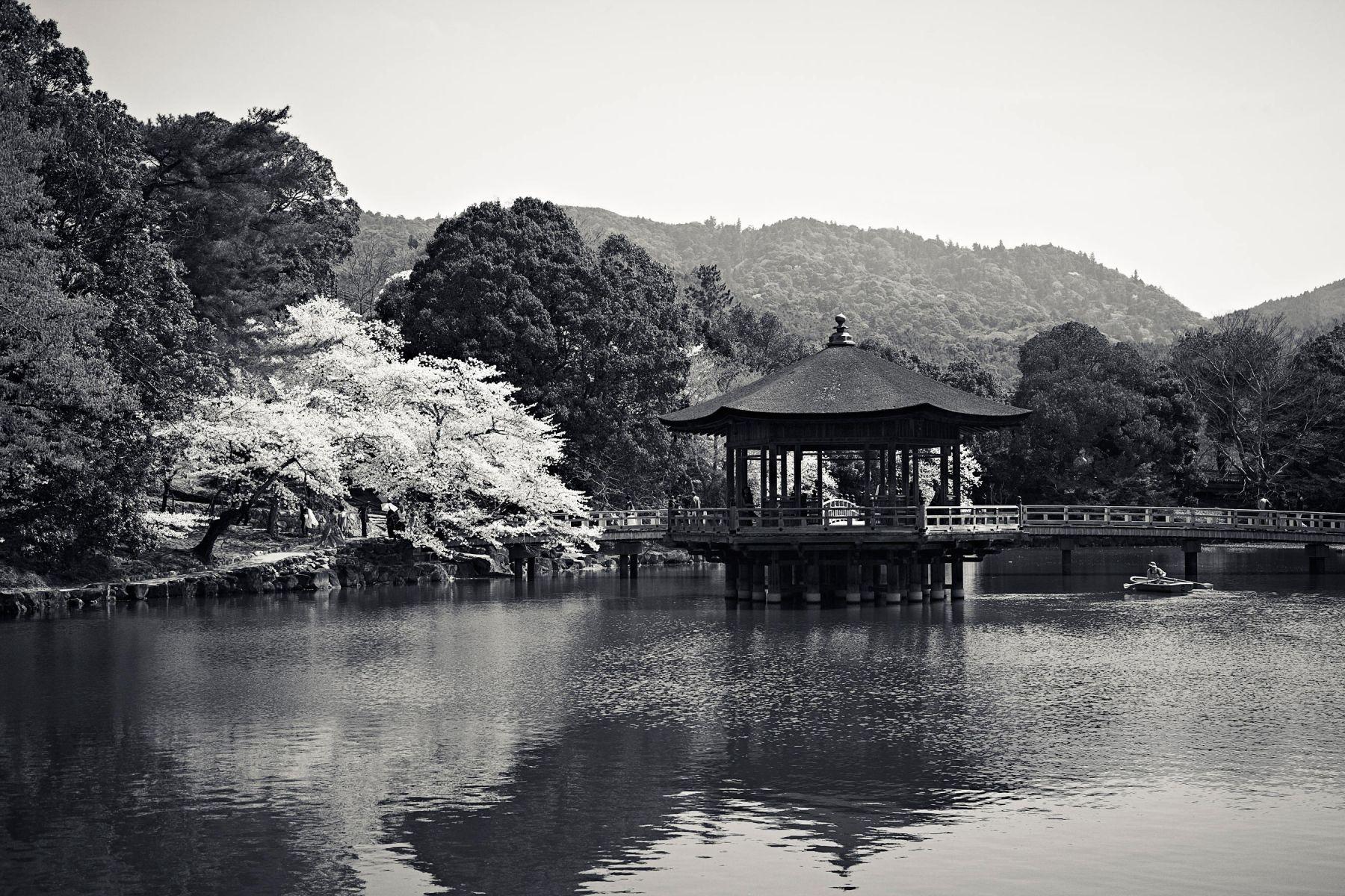 Japan - Tokyo & Nara