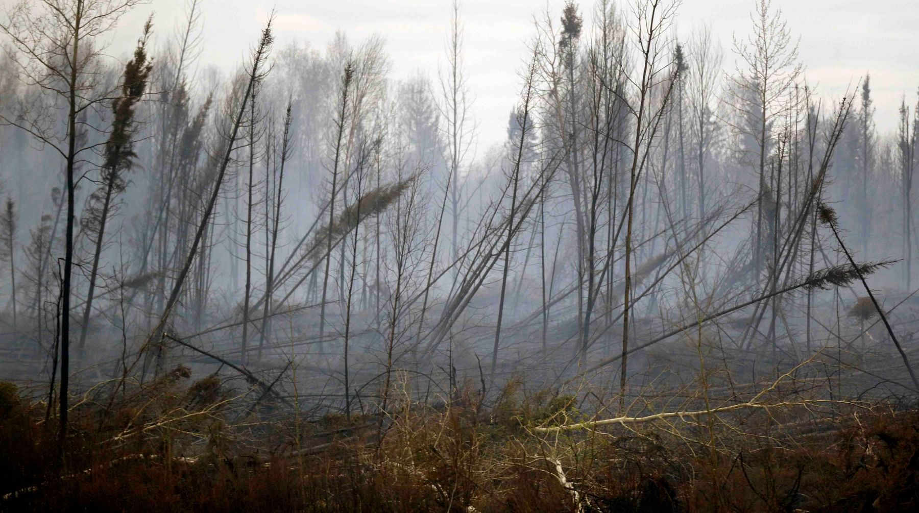 1fort_mcmurray_wildfire_11.jpg