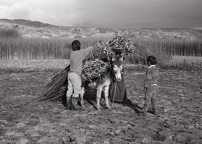 Laguna Colta, Ecuador   1992