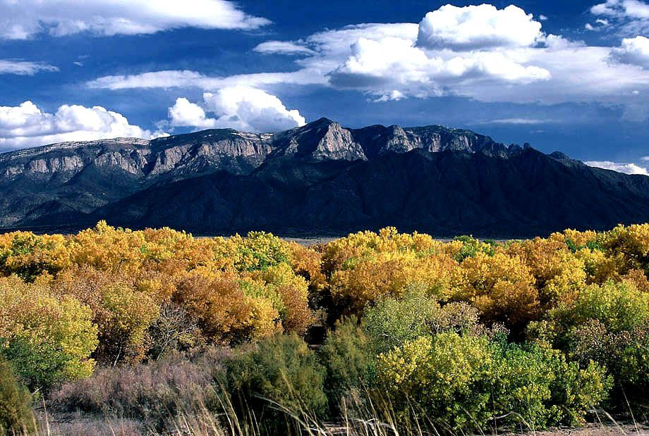 Location Photography Albuquerque NM - Deep blue skies, puffy white clouds and fall colors add to the beauty of the Sandias