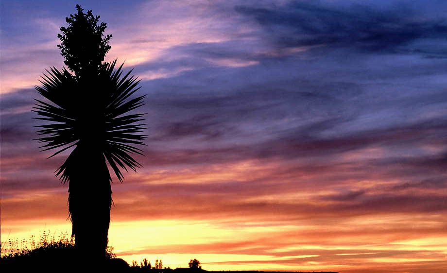 Landscape Photography Albuquerque NM - A Breathtaking Sunset Captured with the Beautiful Red, Yellow, Blue and Orange Colors of the Southwest!
