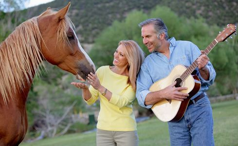 1Couple_playing_with_a_horse_in_a_field_.jpg