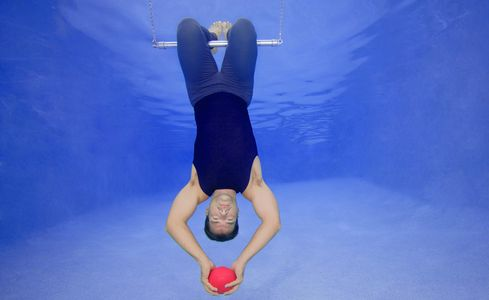 1Gymnast_on_a_trapeze.jpg