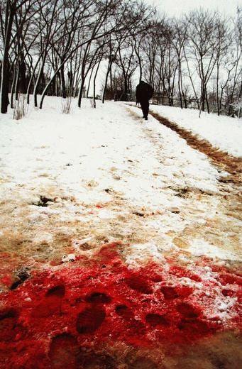 Blood and Honey: A Balkan War Journal