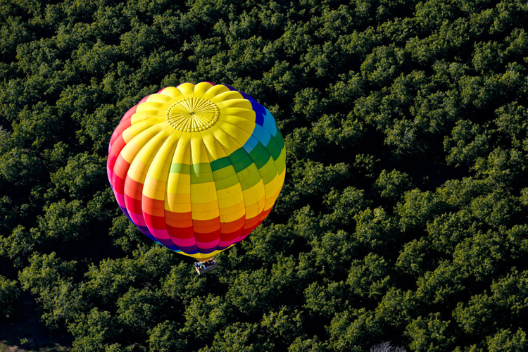 Hot air balloon ride in Napa Valley