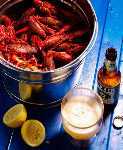 lisa bishop food stylist- dixie crawfish