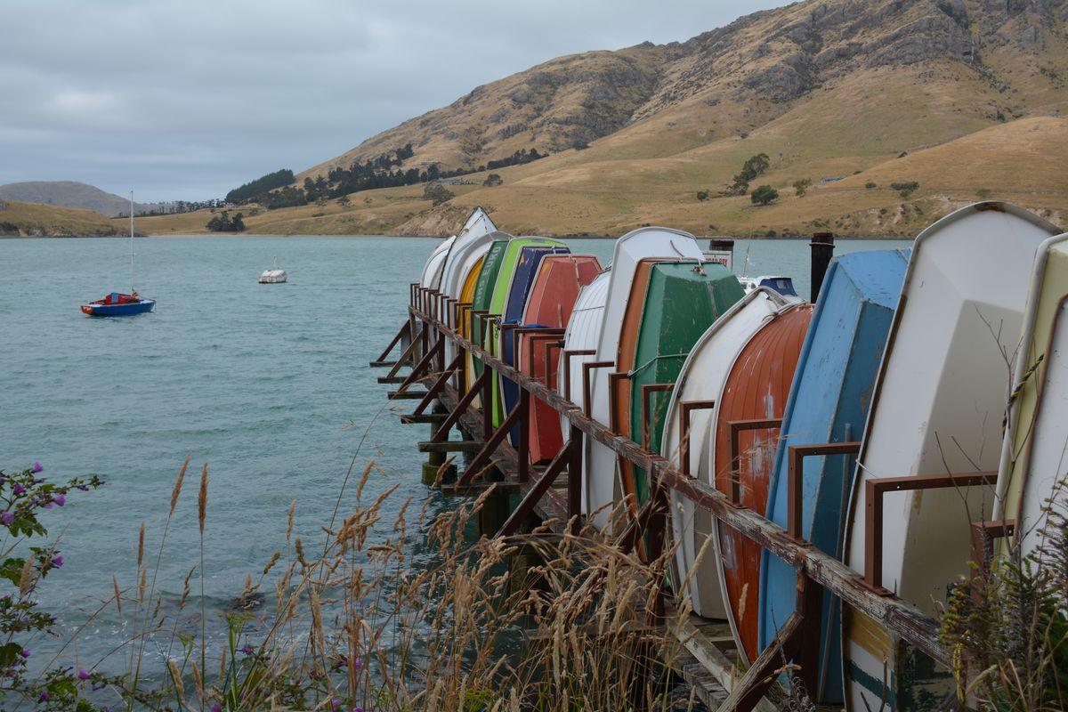 NZBoats.jpg