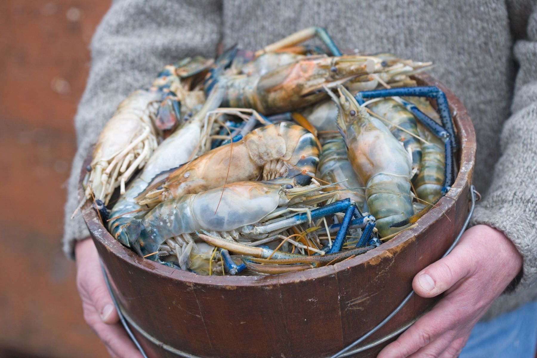 1xd8p2358_cr2_ross_durant_seafood