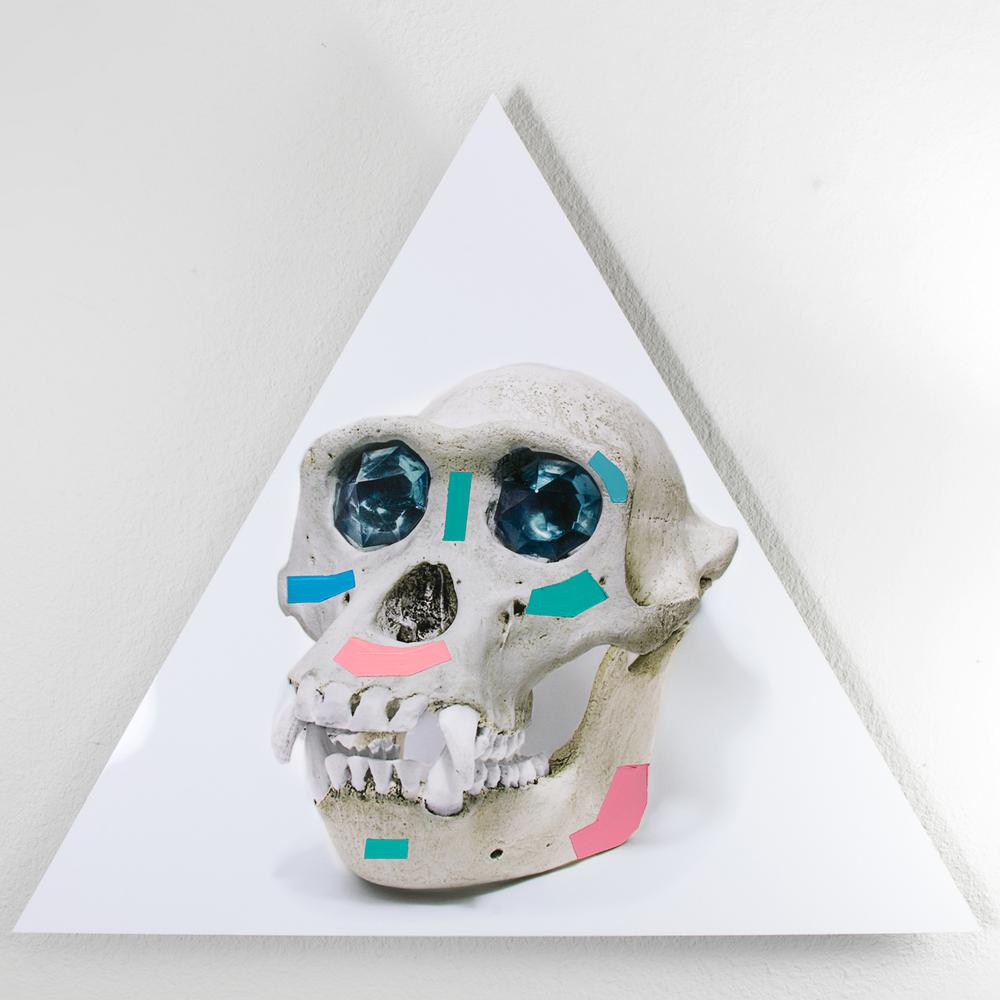 Ancient Gods Always Dream of Forever: Chimp Replica Skull