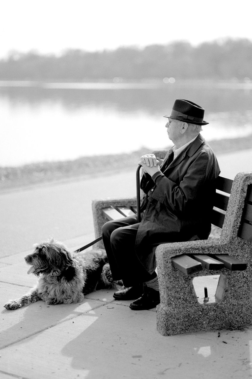 Man-and-dog-at-bench.jpg