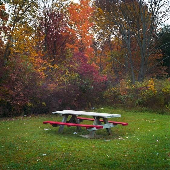Rest Stop Bench, Taconic Prkwy (2008)