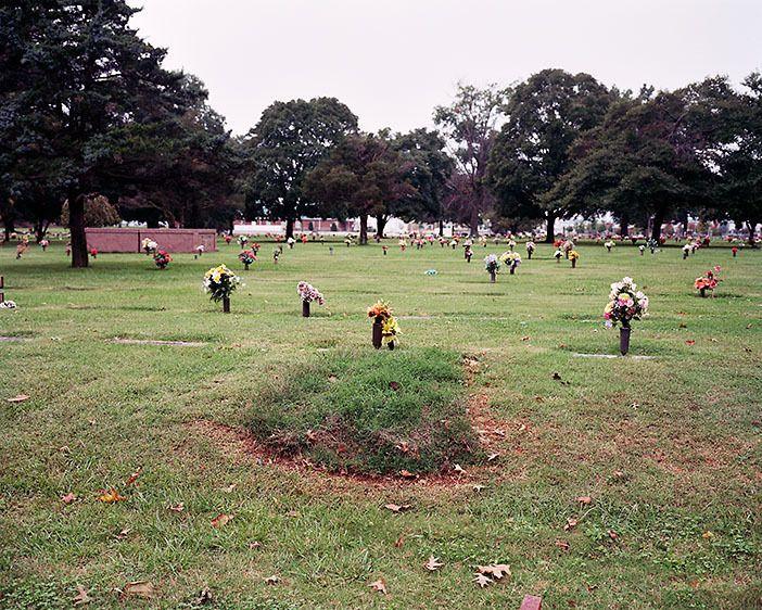 Fresh Grass (2009)