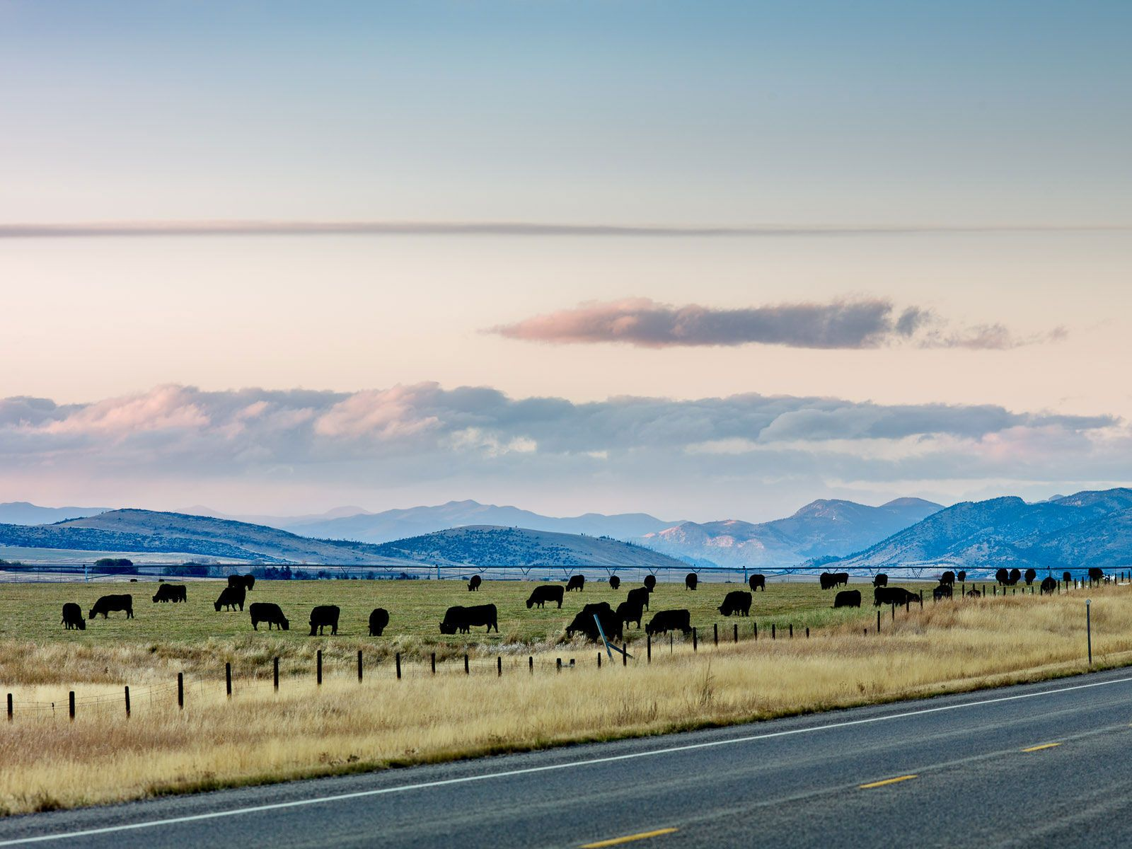 Between Three Forks and Ennis, Montana