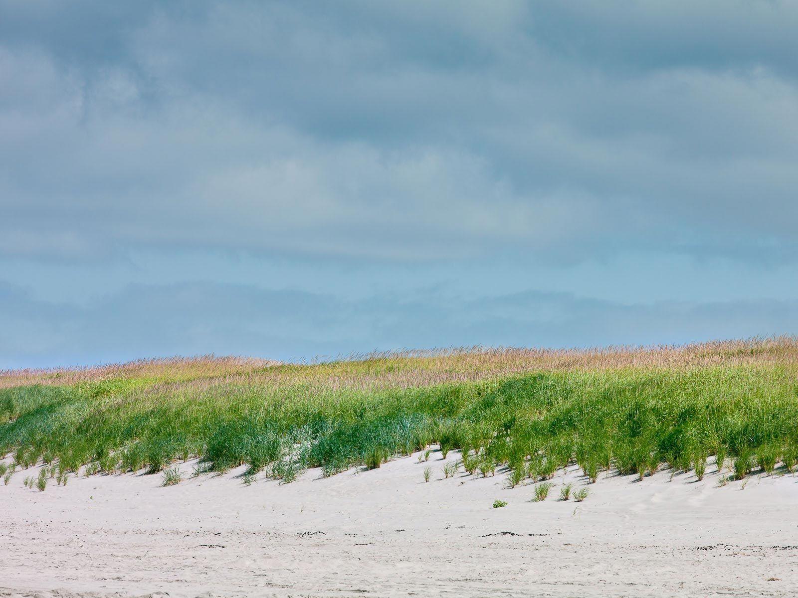 1oregon_coastal_grass_and_sand