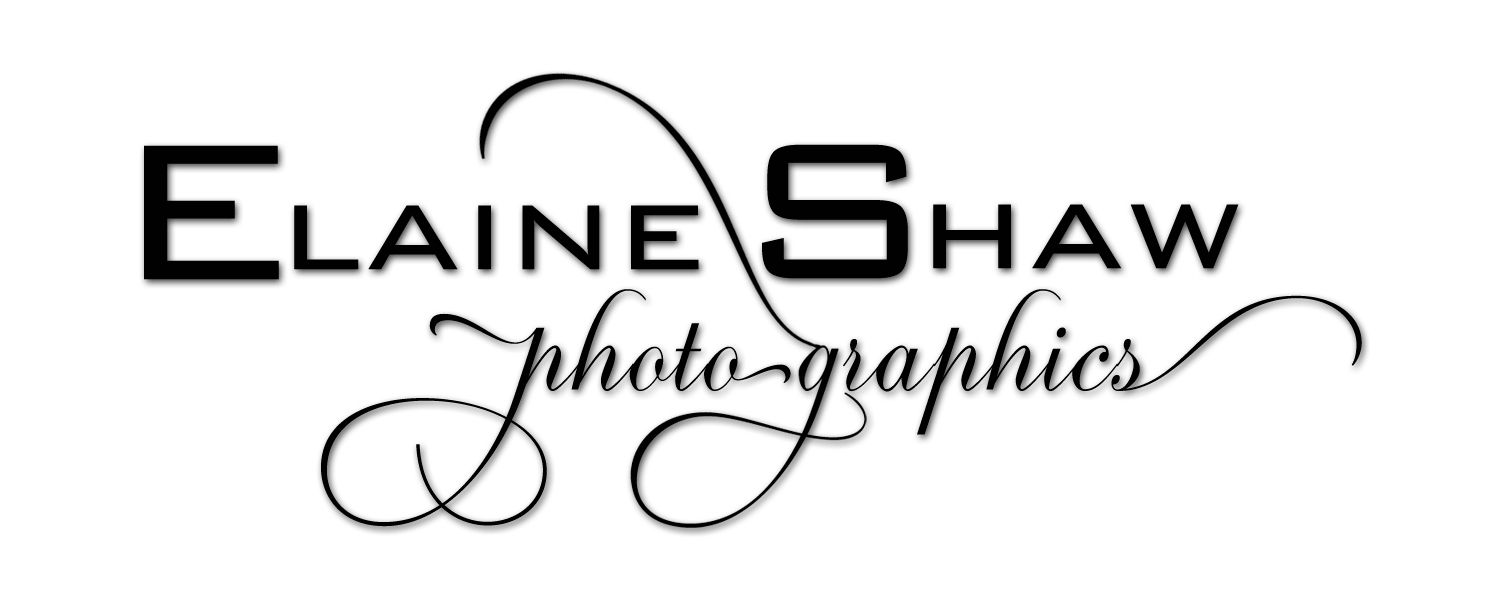 Elaine Shaw photographics