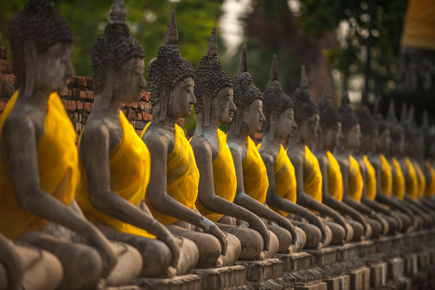 Row of Stone Buddhas with Saffron Sashes