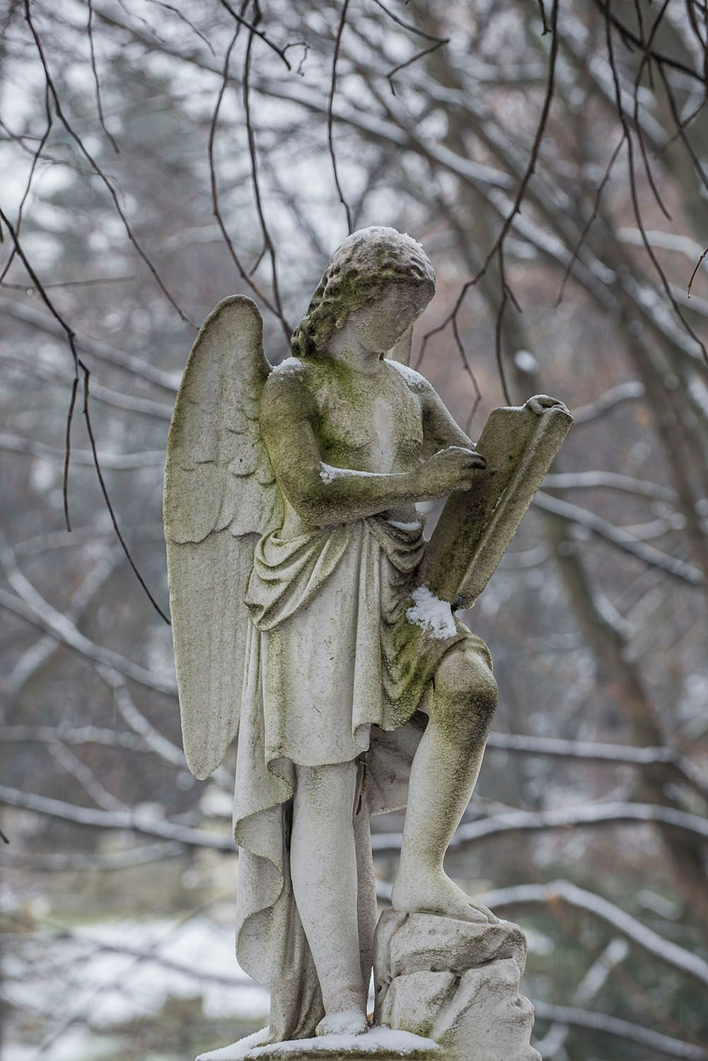 Angel with Book in the Snow