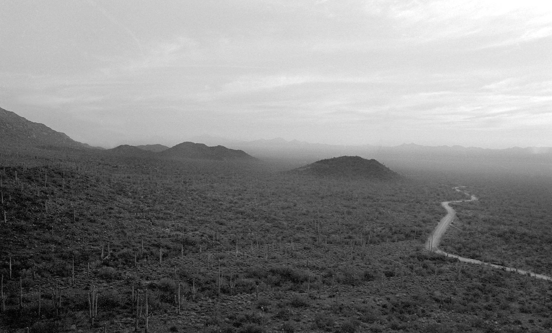 Saguaro National Park, Tuscon Arizona