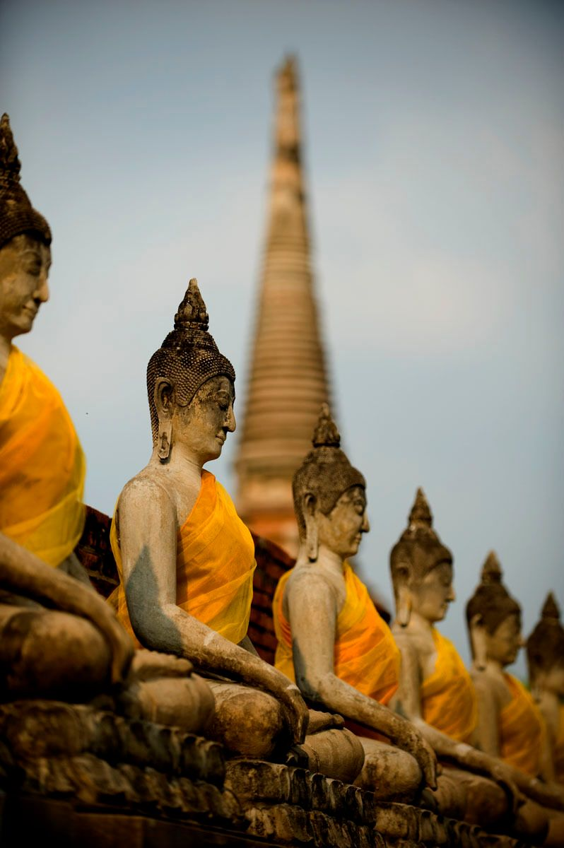 Rows of Buddha's with saffron sashes