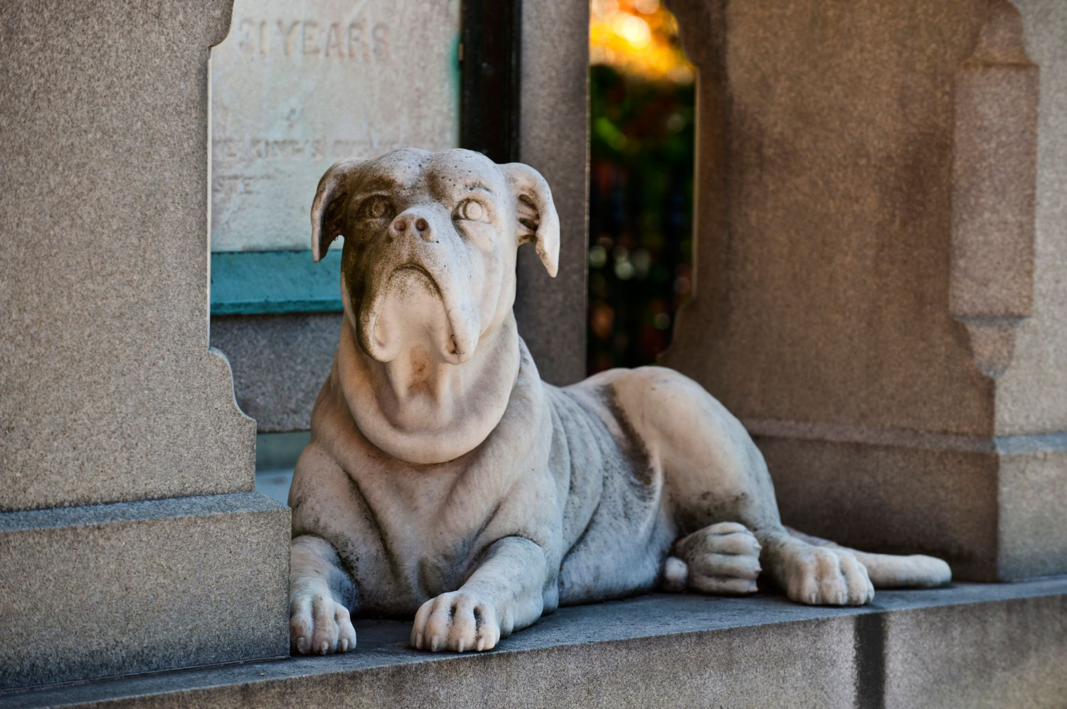 Statue of a dog in a cemetery