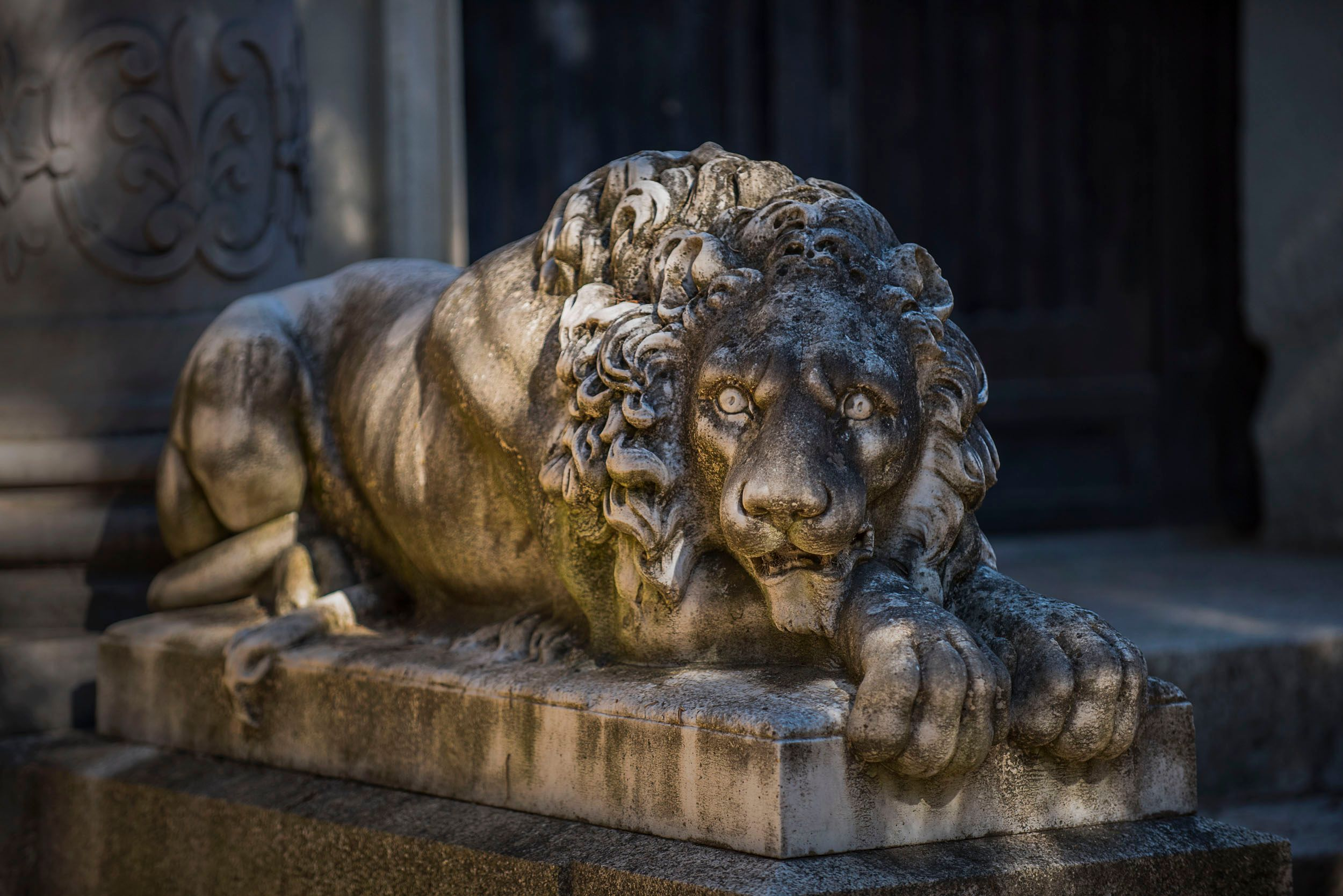 Lion Protecting the Crypt