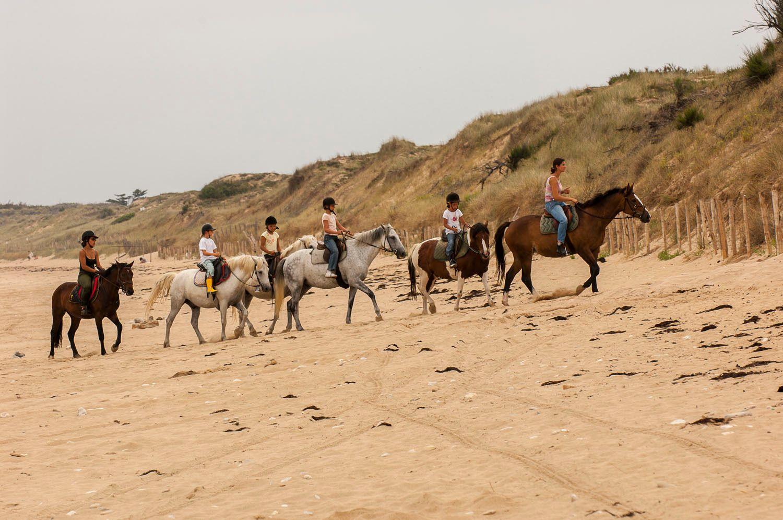 Horseback riding on beach,Île de Ré, France