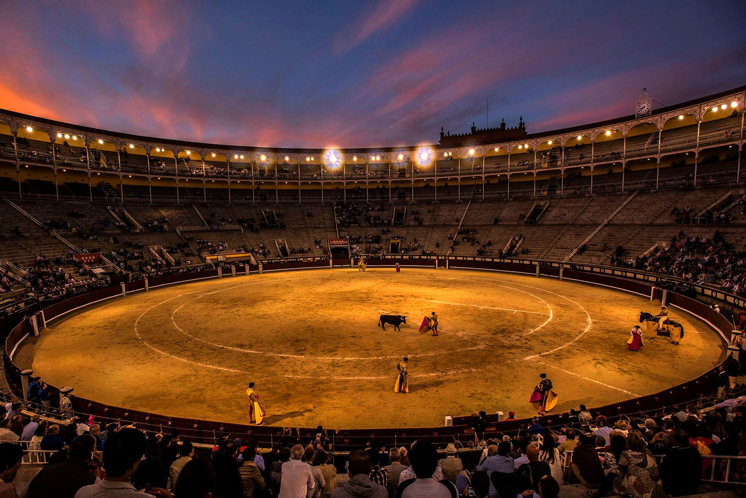 Bull Fighting in Madrid