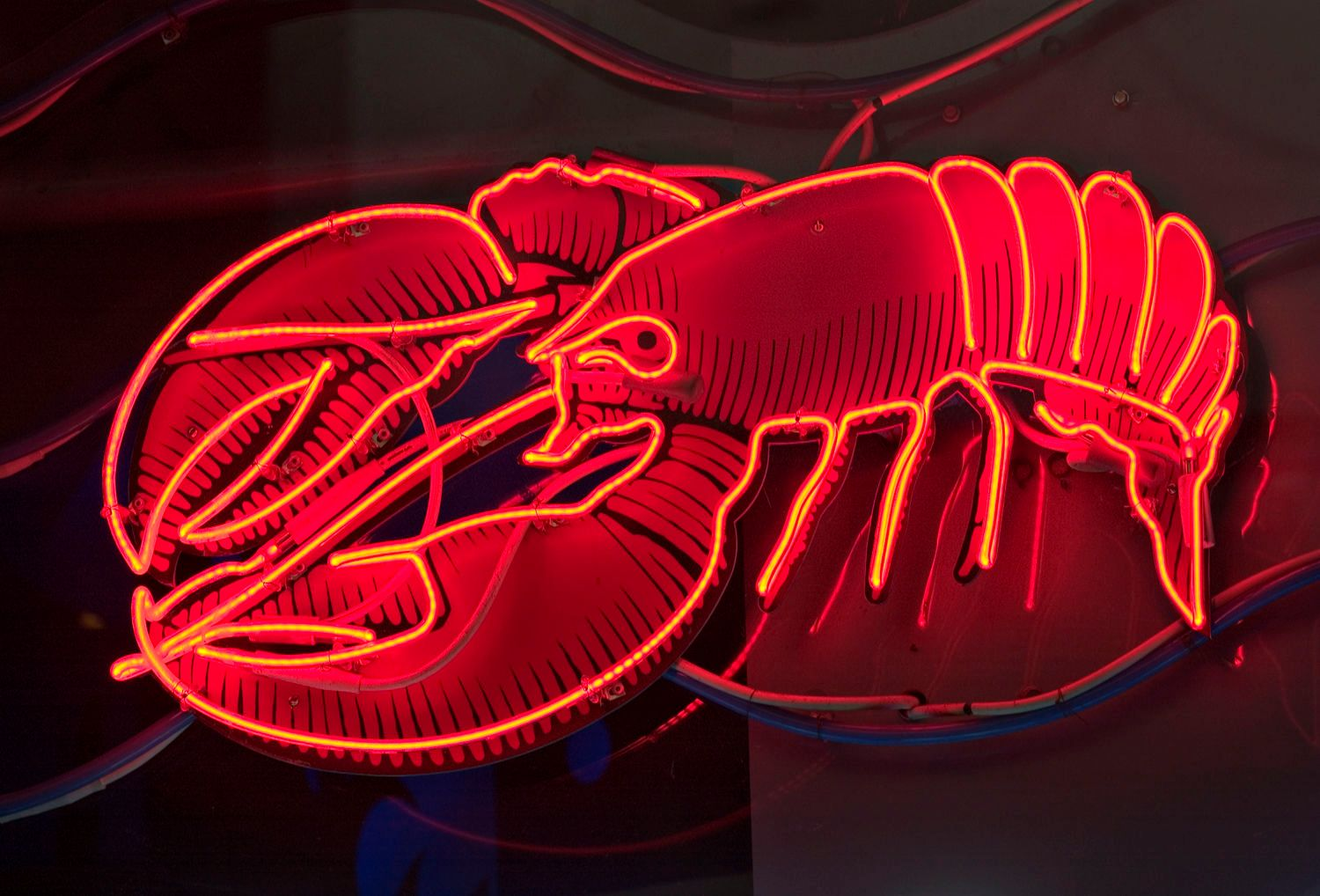 Lobster Neon Sign