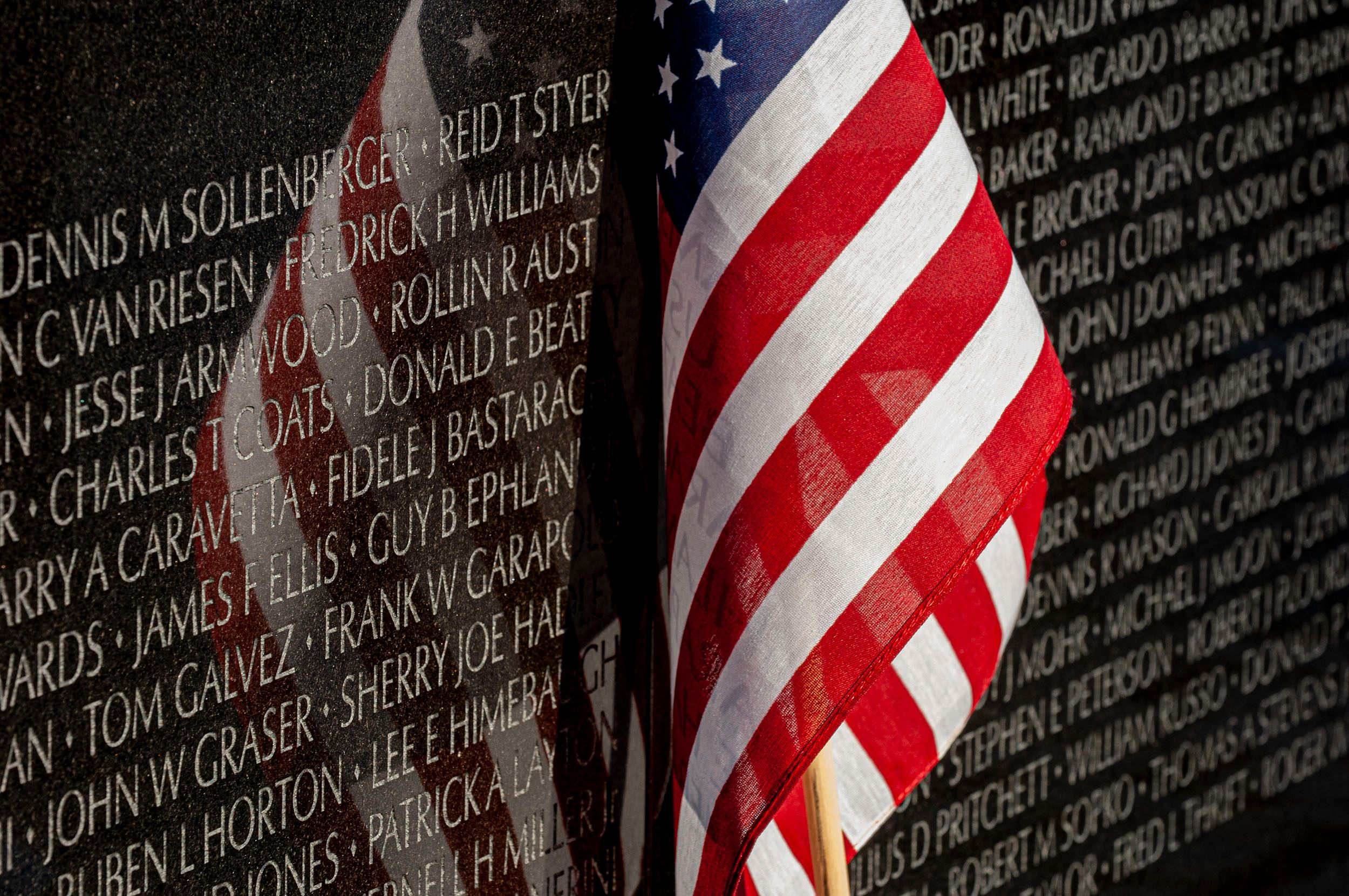 Vietnam Memorial. Veterans Day, Washington, D.C.