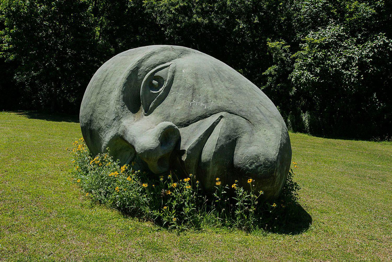 Statue in a Field
