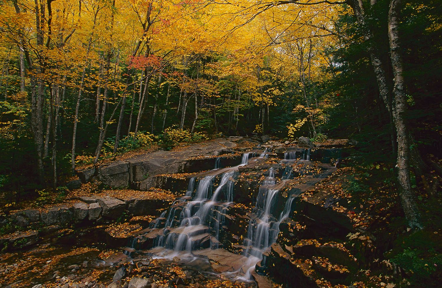 Waterfall in the White Mountains National Forest