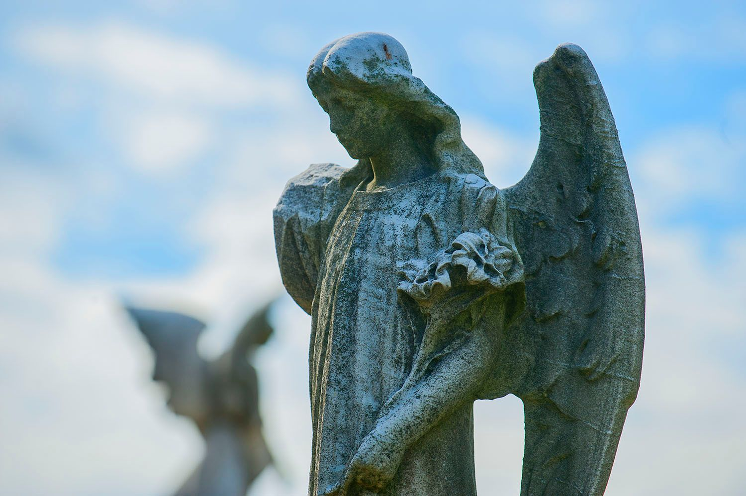 Winged Angels in Cemetery