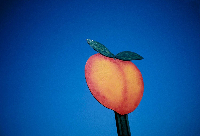 Peach Sign, Blue Sky