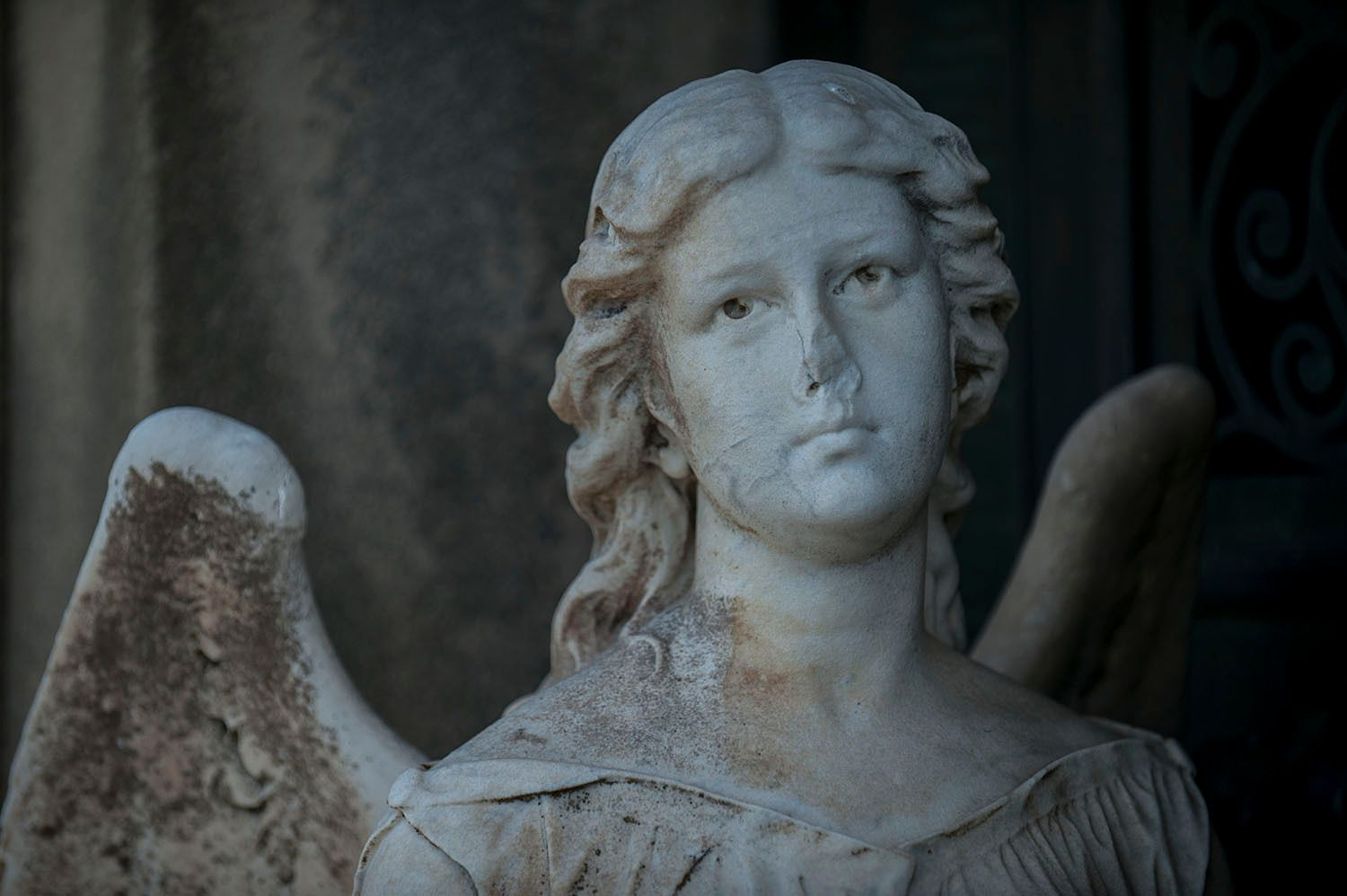 Angel with broken nose guarding grave
