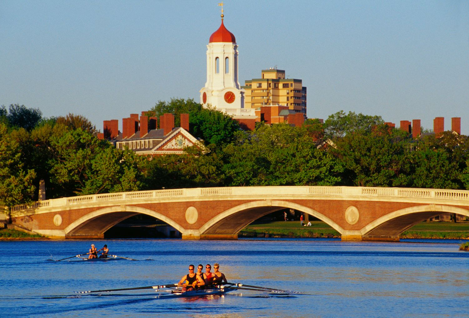 Rowers at Weeks Bridge, Cambridge, MA