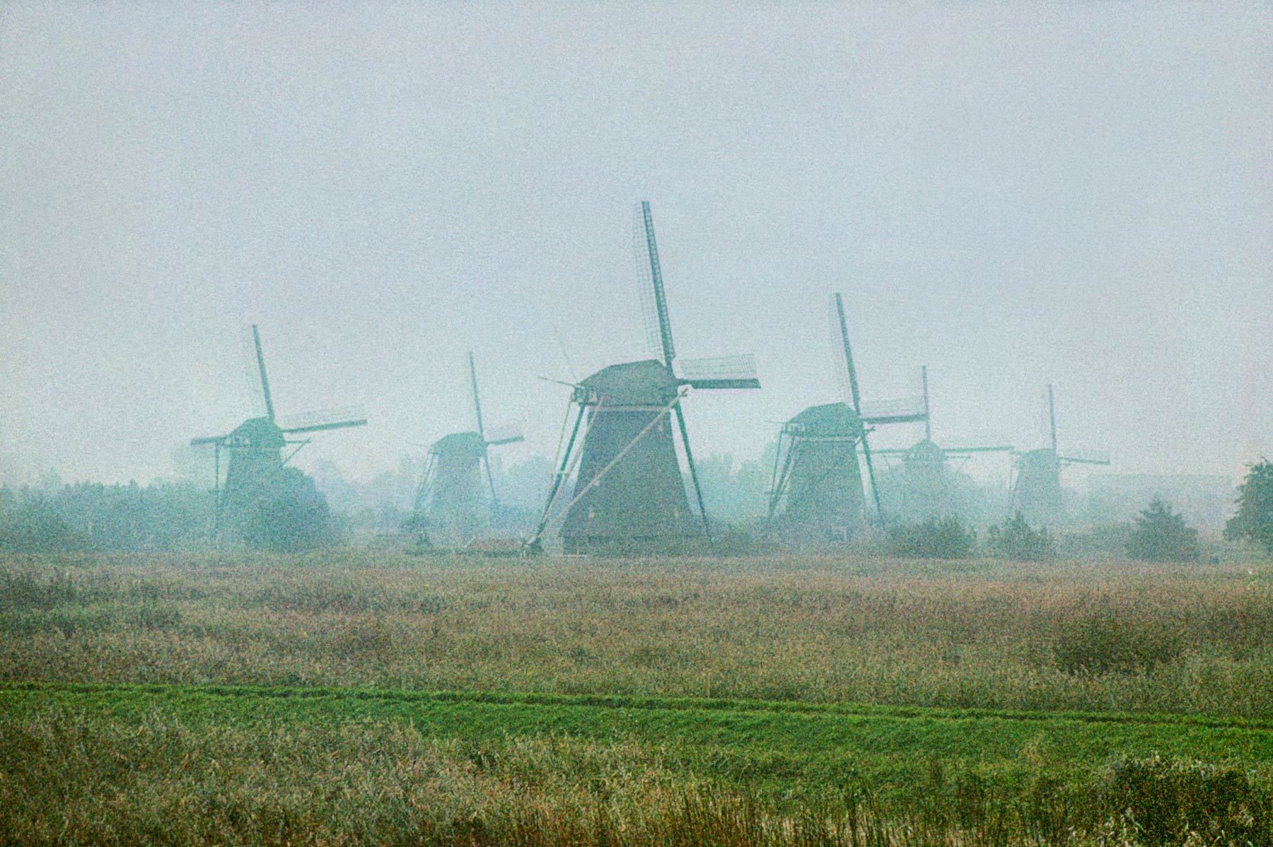 Windmills in Fog, the Netherlands