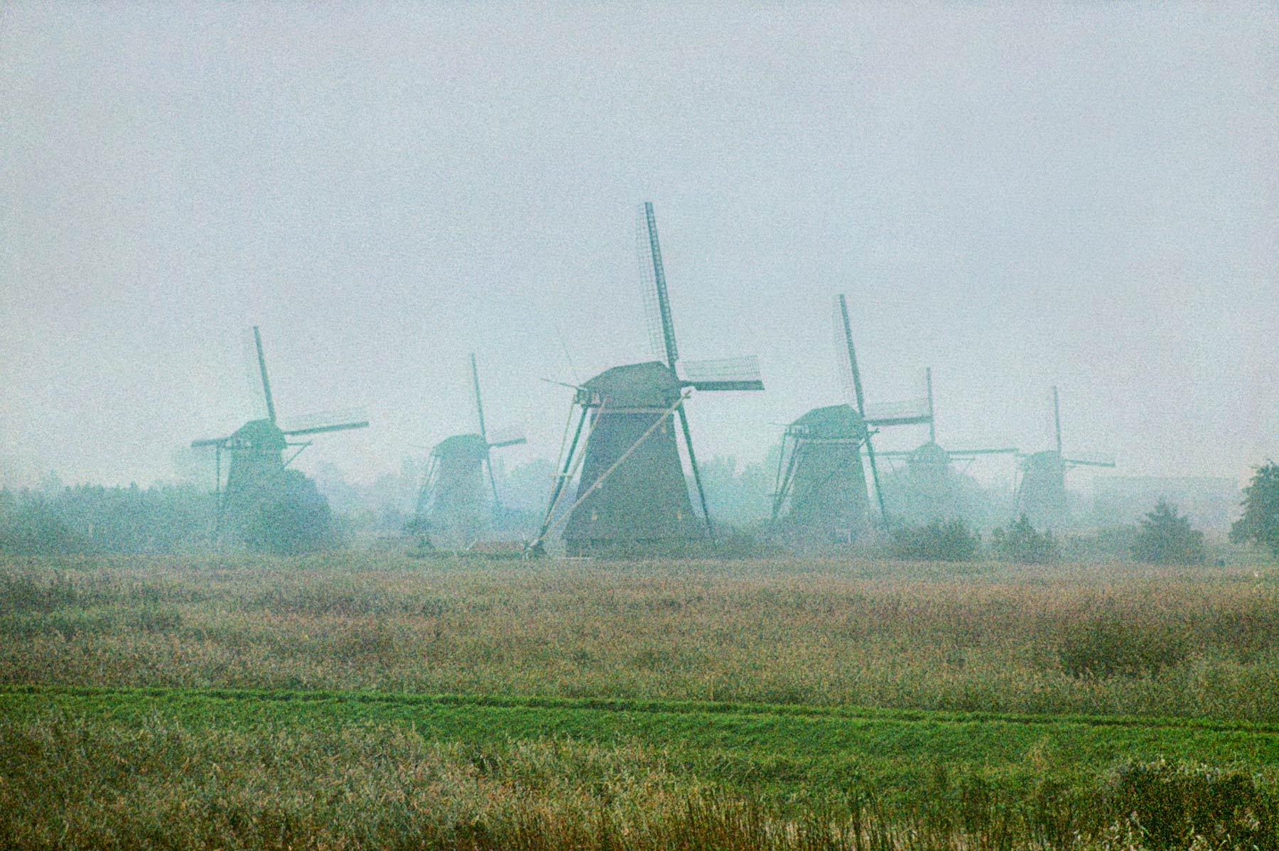Windmills in Fog, the Netherlands