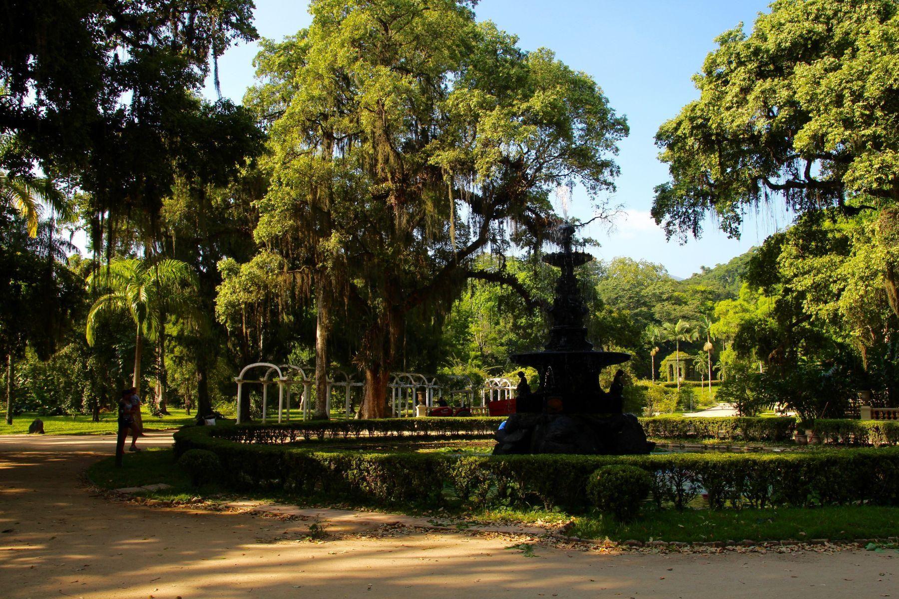 Jardim Botânico (Botanical Garden), Rio de Janeiro