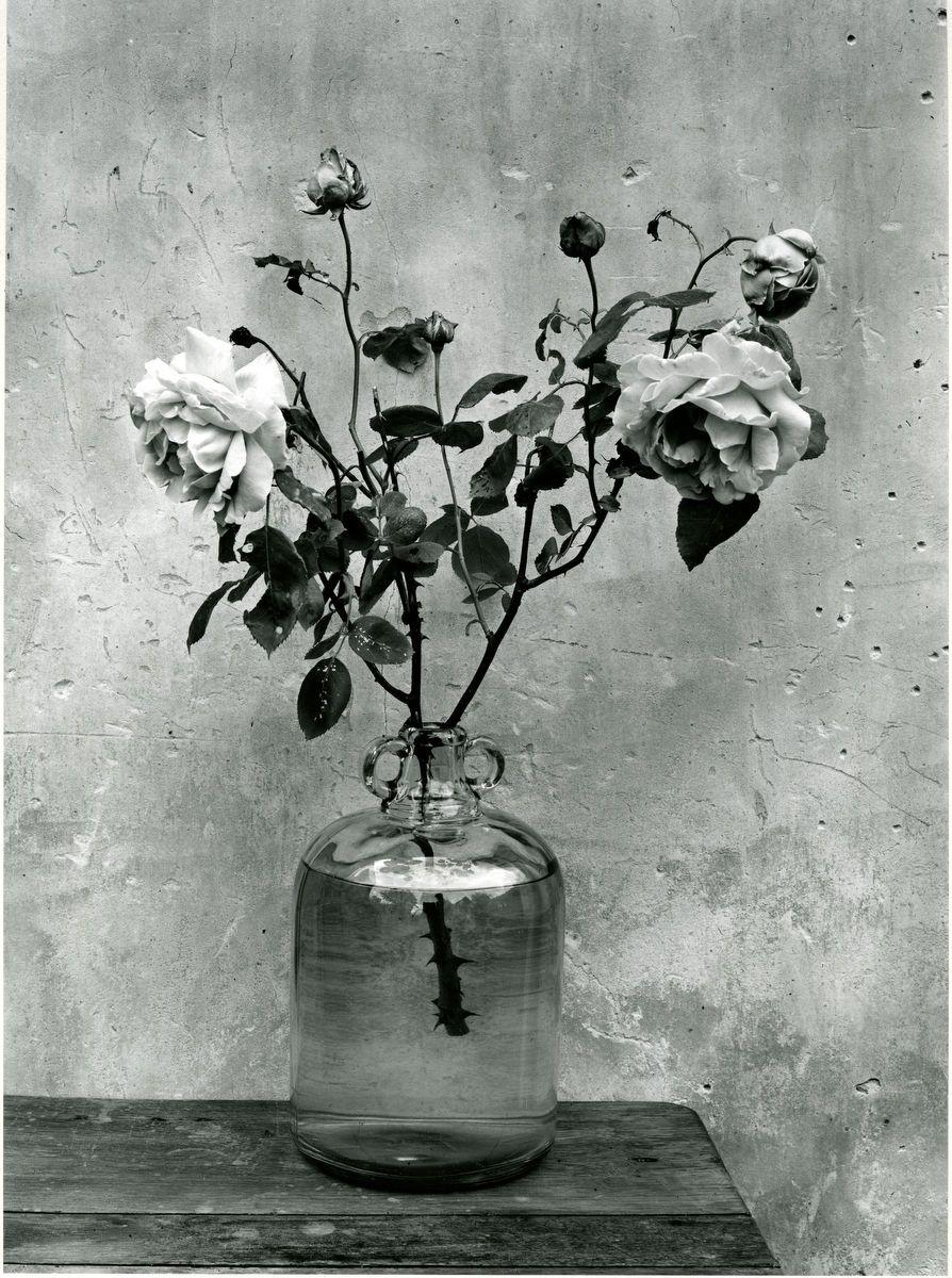 1bonbonne_et_roses_1949.jpg
