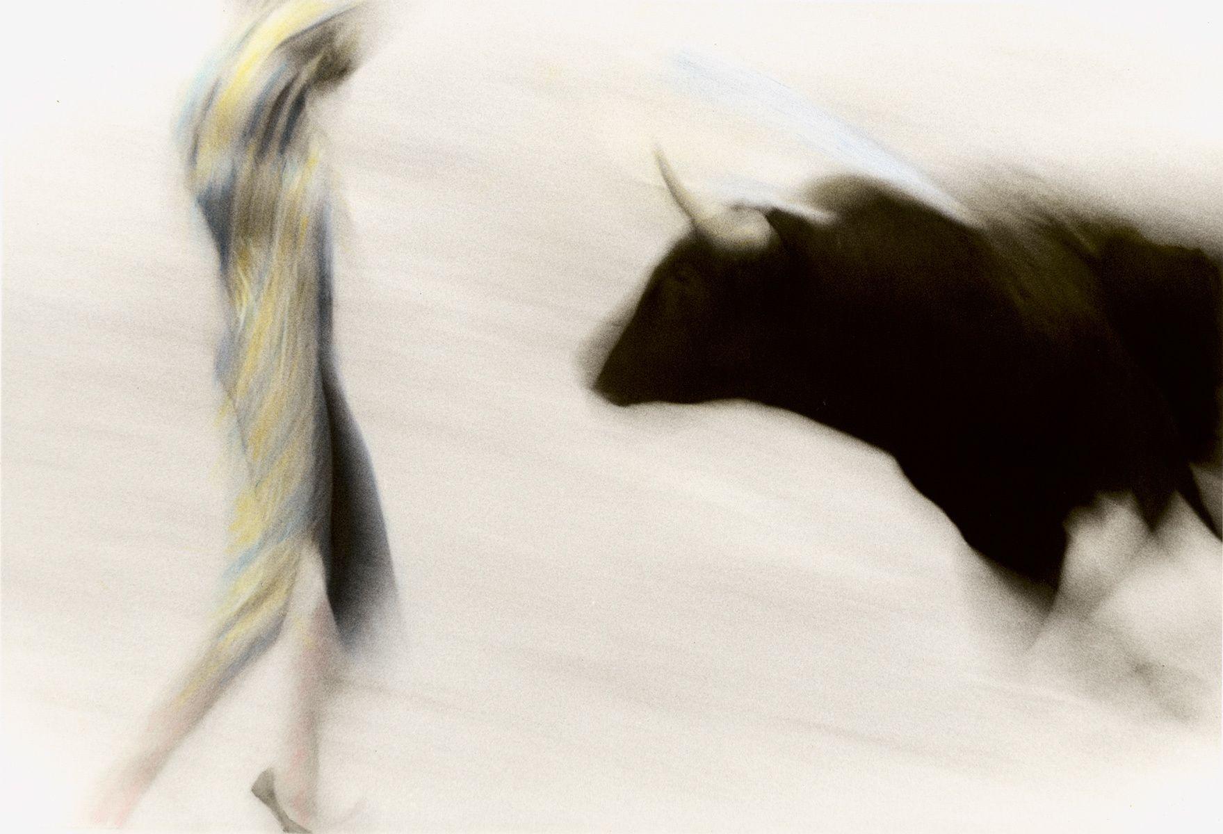 Dance with the Matador, Arles