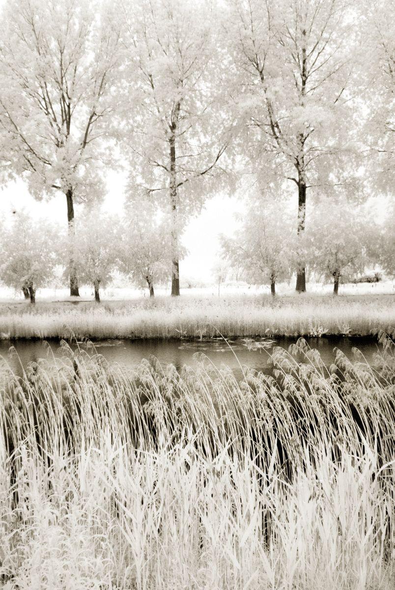 Bruges, 2010