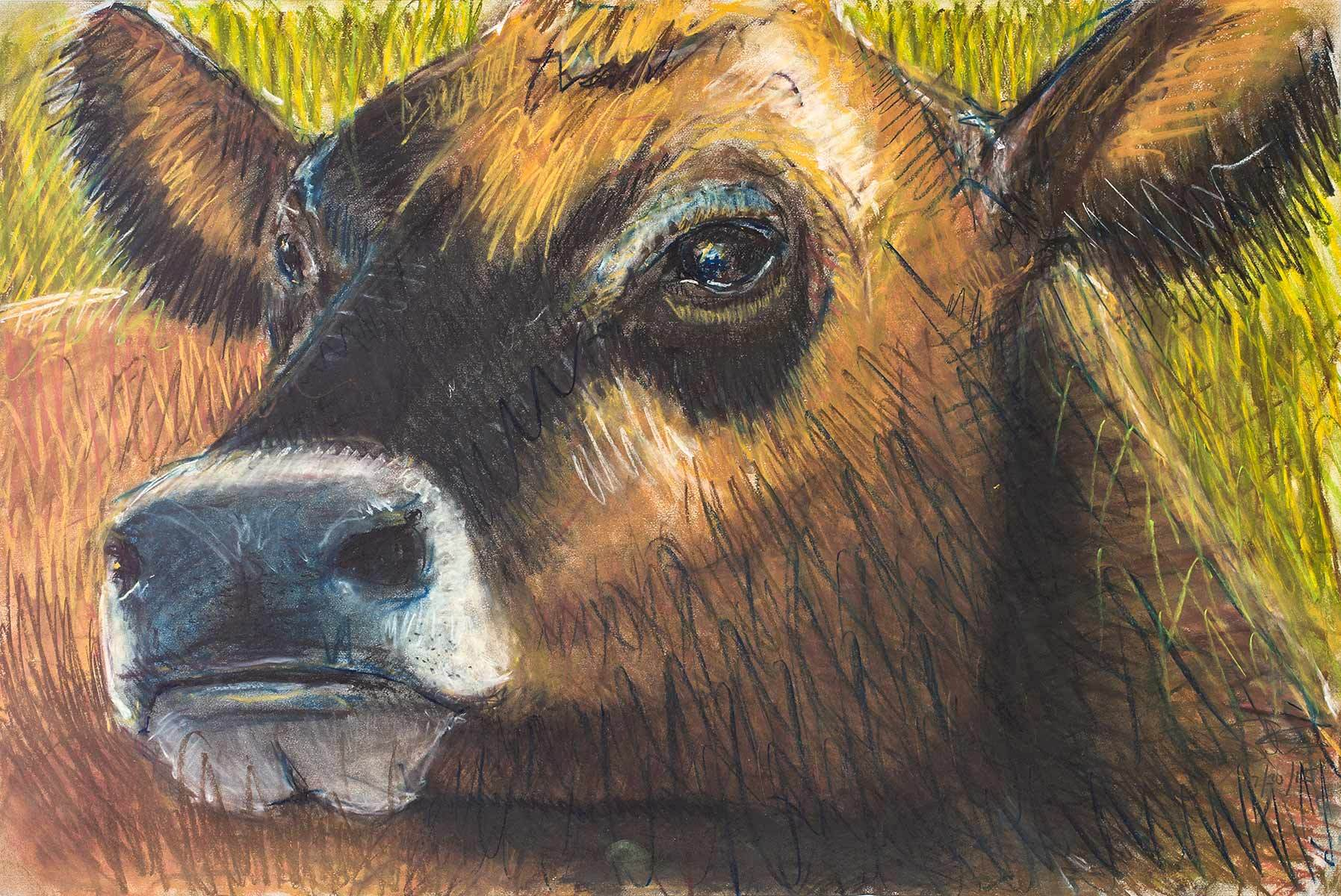 1cow_portrait_3621