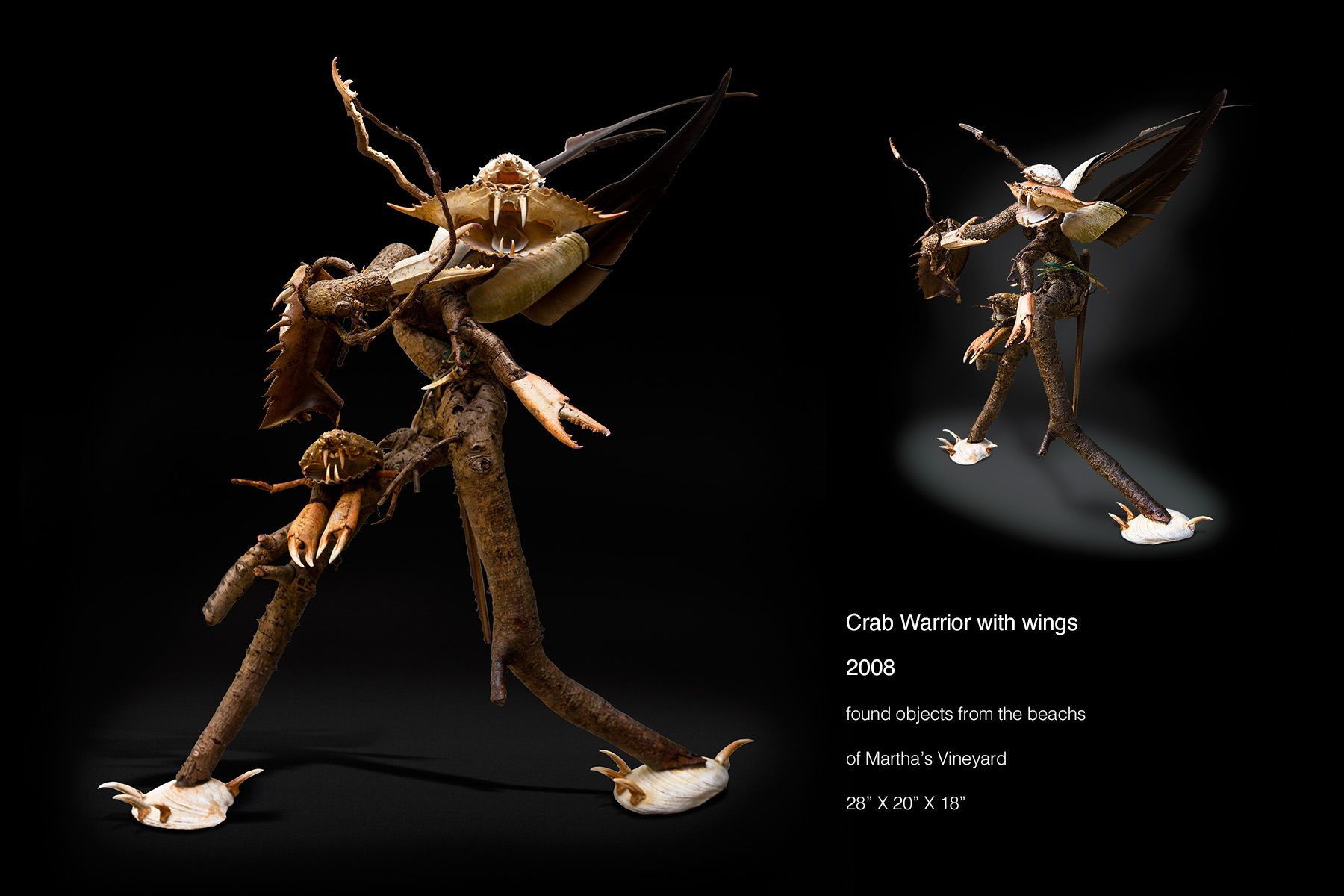 Crab Warrior with Wings