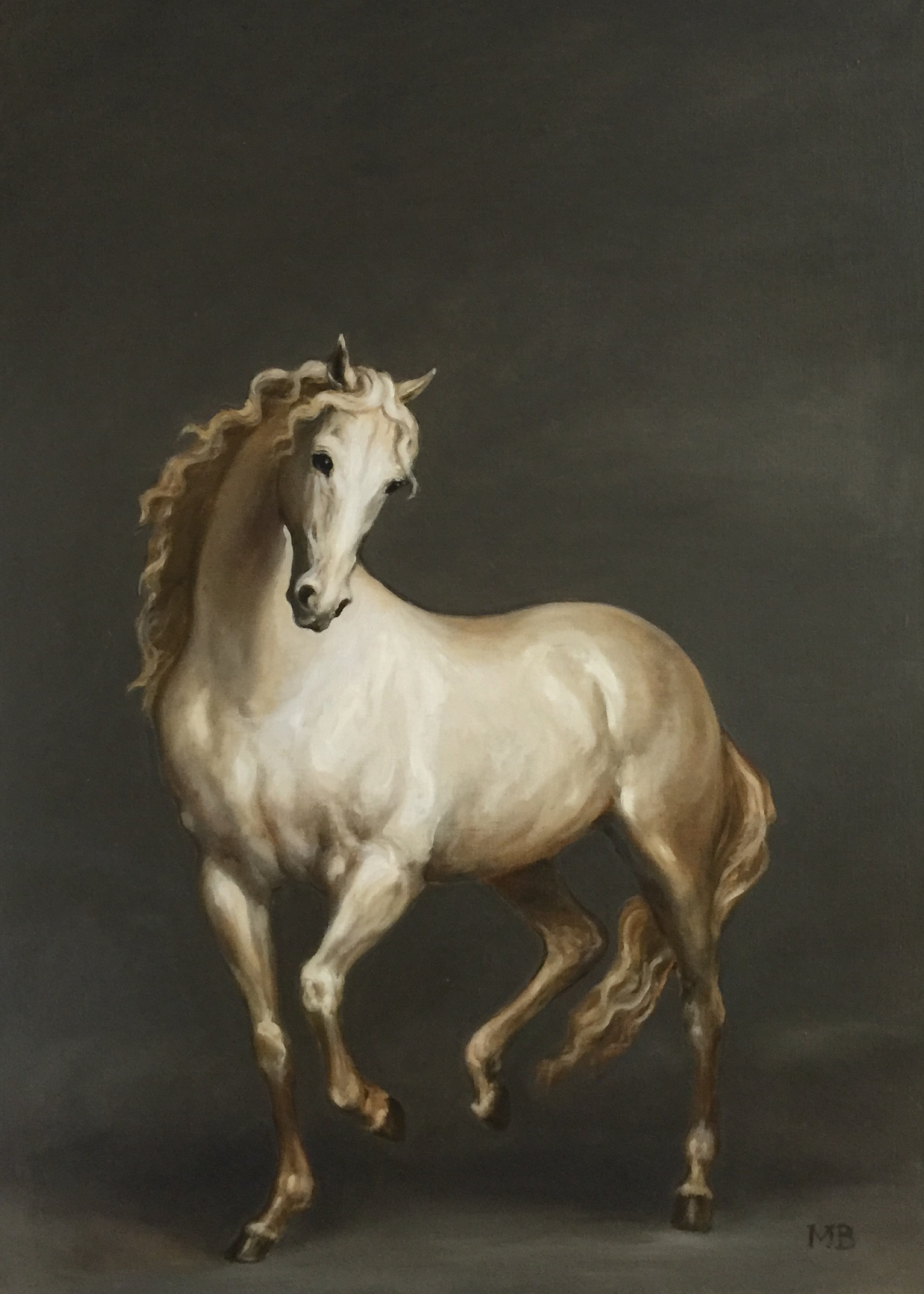 White Horse on Grey