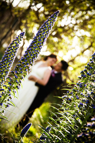 Chase Palm Park Wedding Santa Barbara
