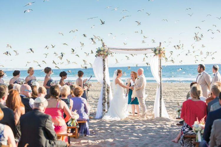 Wendy Spears - Nic & Shara Beach Gulls.jpg