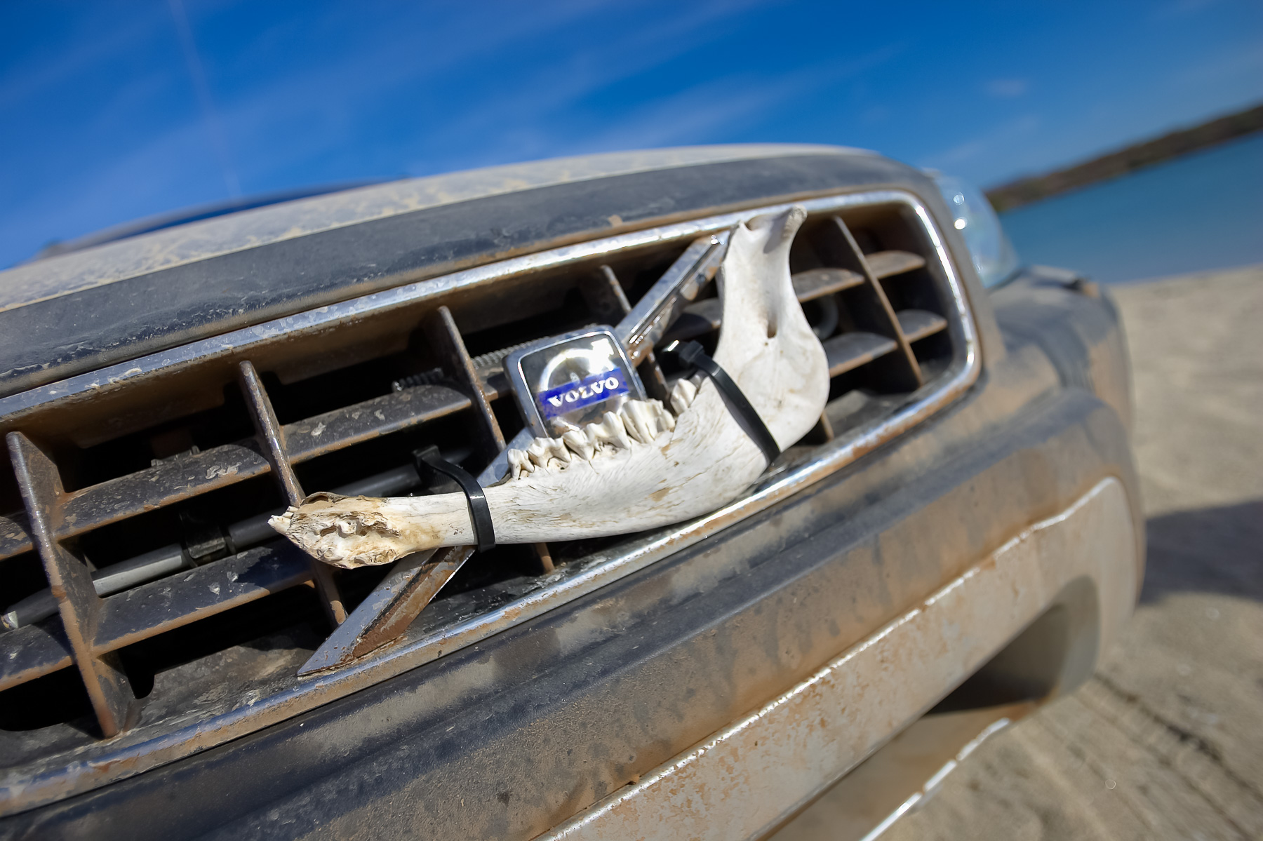 Volvo Baja Enduro 185.jpg