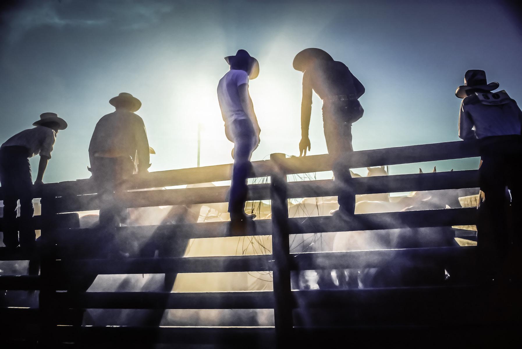 1cowboys_and_dust_2.jpg